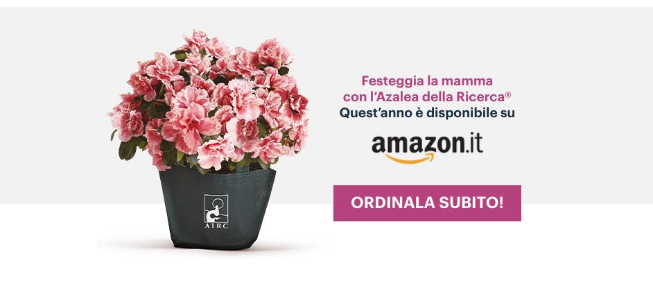 Azalea Airc disponibile su Amazon